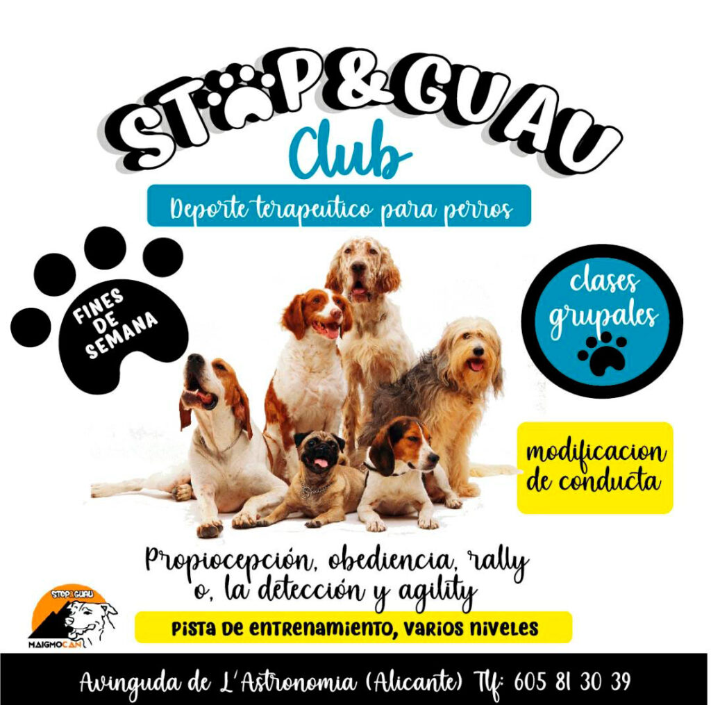clases grupales